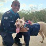 Pit Bull com sinais de maus-tratos é adotado e ganha fardamento da Polícia Militar do Crato